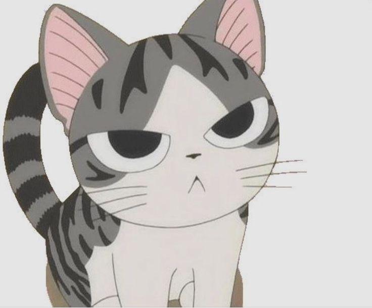 Смешные котики аниме, день матери
