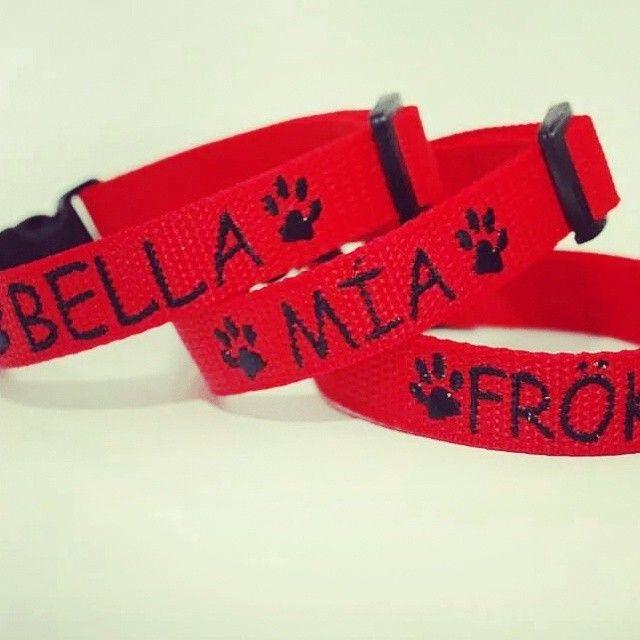 Obojky s vyšitými jmény od Blackberry | Collars with emroidered names by Blackberry #bella #mia #froken #red #collar #embroidery #customized #paw #tlapka #name #jmeno #vysiti #cervena #obojek