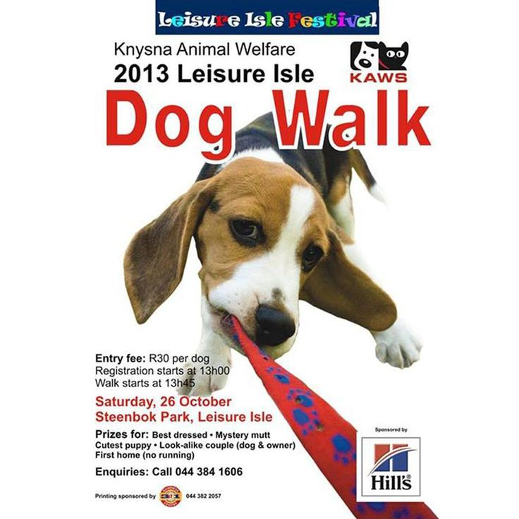 Knysna Animal Welfare Society: And hot on the heels of the fabulous Simola Dog Show, yet another fun event for you to enjoy with your canine friends #canines #dogwalk