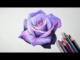 how to draw a realistic rose in pencil에 대한 이미지 검색결과