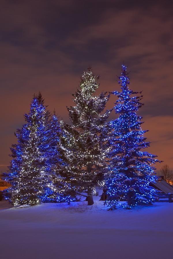 Christmas in Calgary, Alberta, Canada