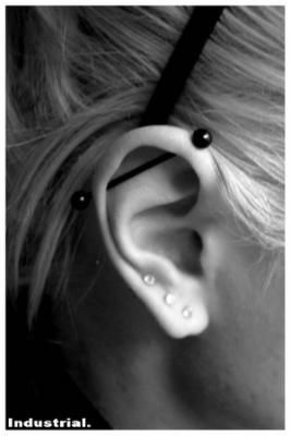 I got my industrial pierced 2 years ago because no one had it and now everyone does -_- but this black bar is cute.