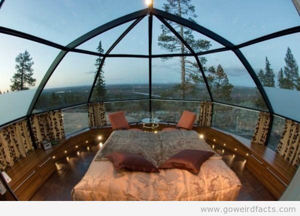 Glass Igloos Northern Lights | Northern lights&igloo resort - GoWeirdfacts