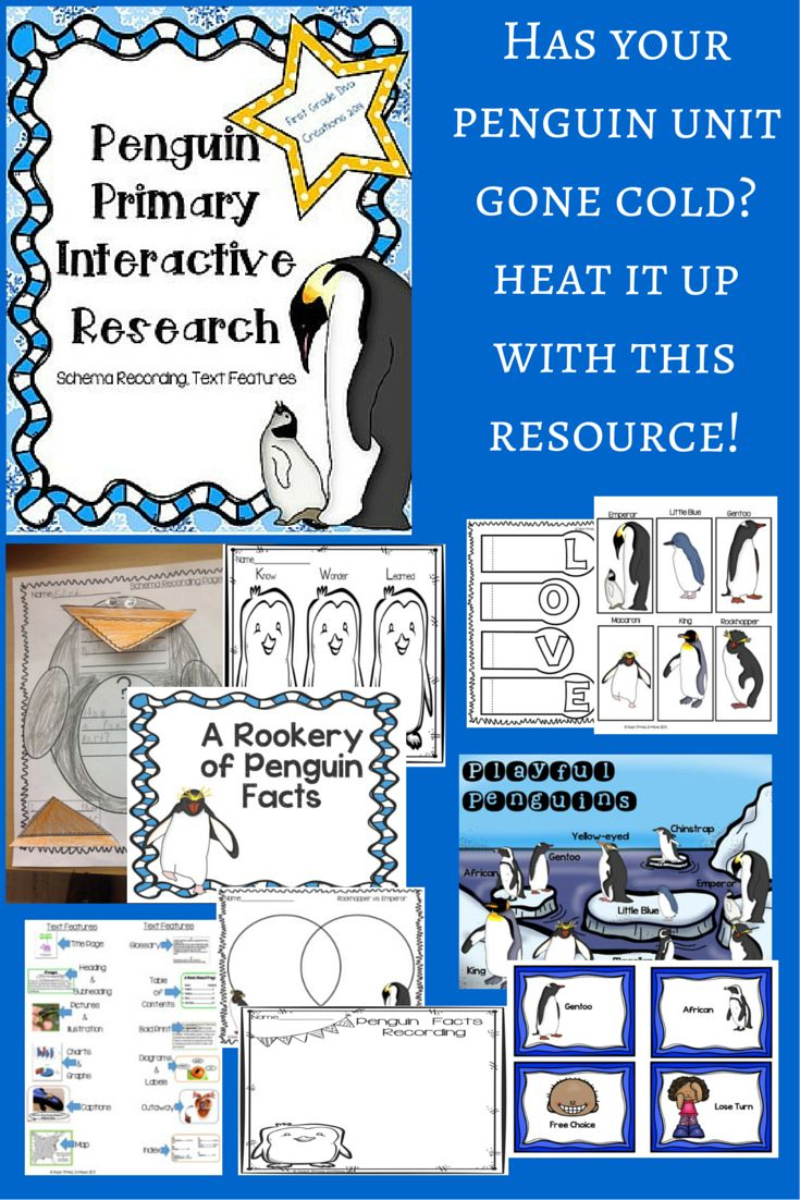 $ Just add your favorite informational books about penguins and you are ready to teach your primary students about text features and research. #PenguinSchemaFolder #PenguinInformational