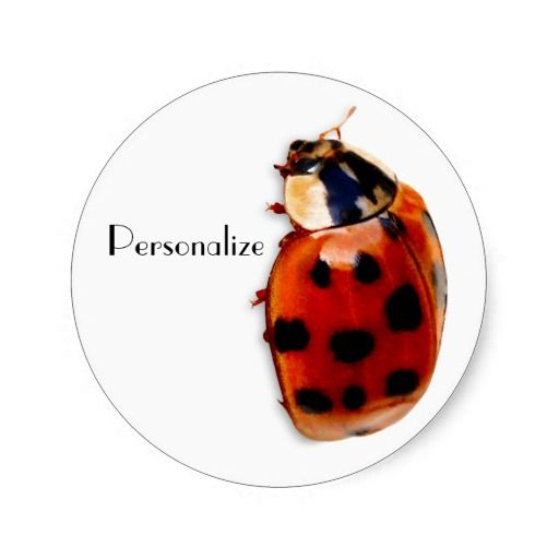 Personalize by adding your name to these ladybird theme stickers with a cute red spotted ladybug