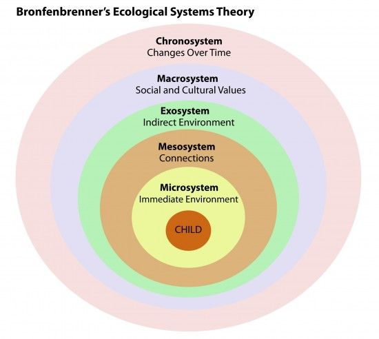 bronfenbrenners ecological theory of development Theories of development  - in bronfenbrenner's ecological theory the ___ consists of the patterning of environmental events and transitions over the life course .