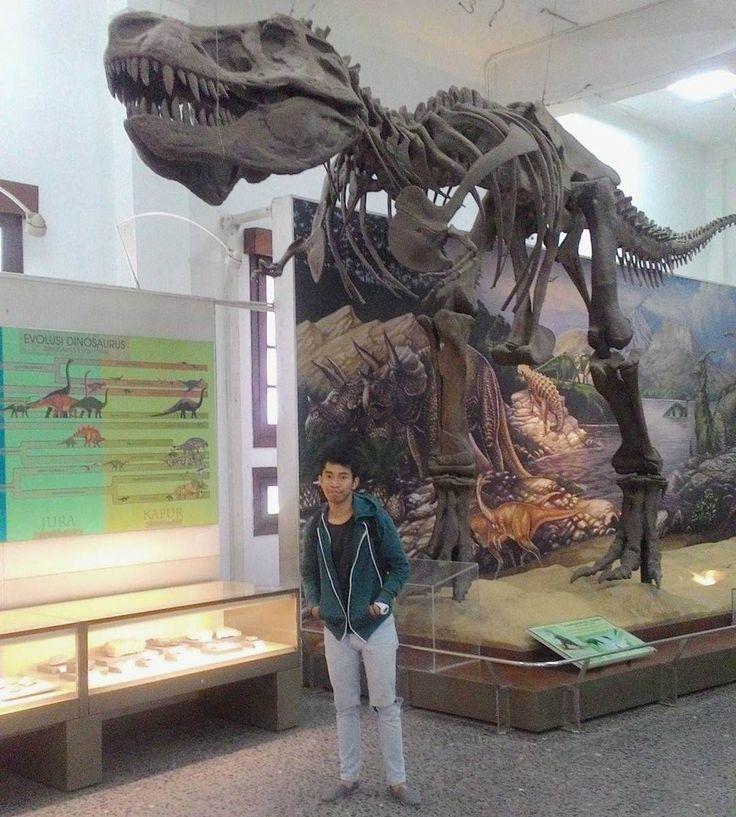 Sejarah pertumbuhan dan perkembangan makhluk hidup serta ilmu pengetahuan mengenai sejarah kehidupan menjadi daya tarik utama dari Museum Geologi Bandung yang terbagi atas dua lantai dimana setiap lantai memiliki ruang tersendiri.[Photo by instagram.com/rizalcahyan]
