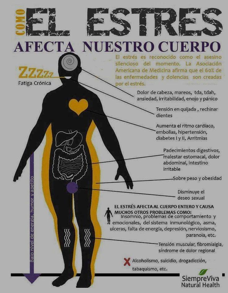 Cómo el estrés afecta a nuestro cuerpo