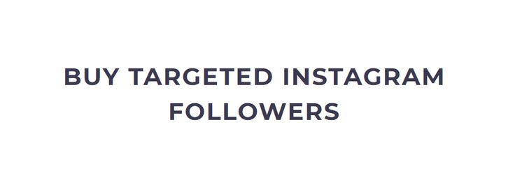 Buy Targeted Instagram Followers | Niche/Competition Targeting Service