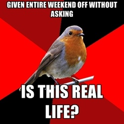 Retail Robin - Most popular images all time - page 3 | Meme Generator