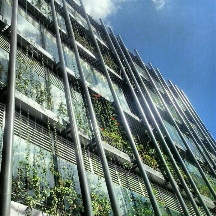 Hewlett Packard - Ruta N. Medellin