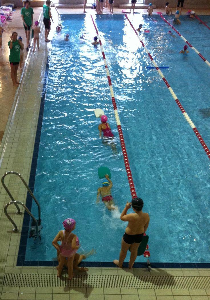 úszás  ZÖLDBÉKA Úszó Club