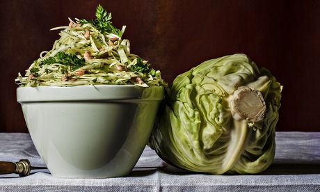 White Cabbage and Brown Shrimp. Photograph: Romas Foordsig