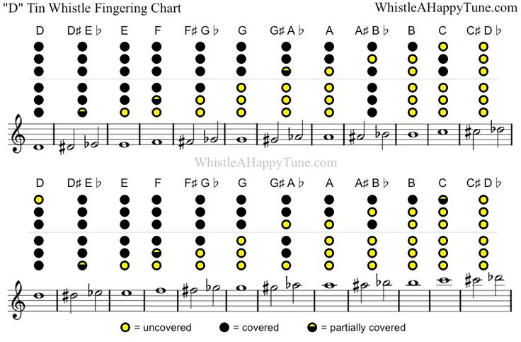 D Tin Whistle Fingering Chart | Tin Whistle | Pinterest | Tin