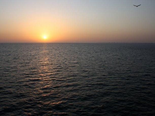 Con la Biblia y una manta, el náufrago Louis Jordan logra sobrevivir 66 días Océano Atlántico