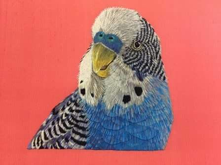 Silk shaded budgerigar by Kate Barlows, a Future Tutor at the Royal School of Needlework.