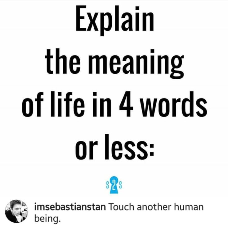 Sebastian Stan | Sebastian stan, Meaning of life, Thats not my