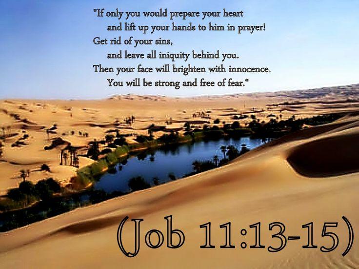 Image result for Job 11:13
