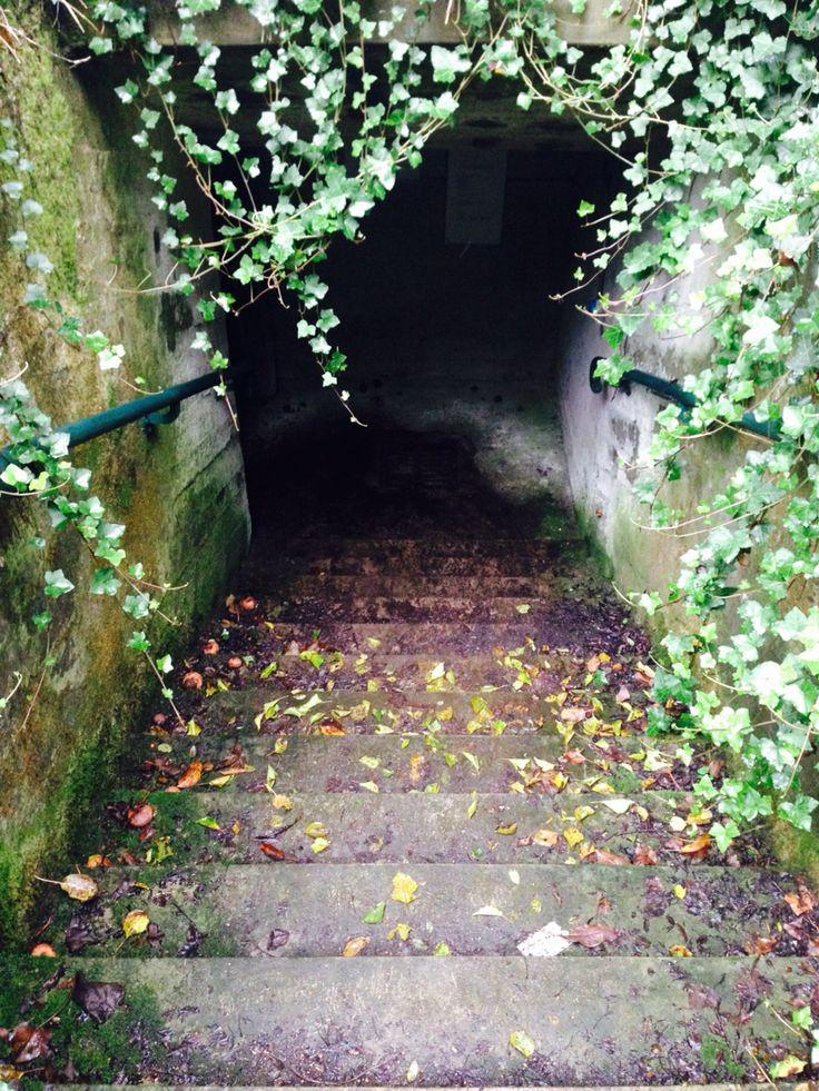 Entrata bunker Breda