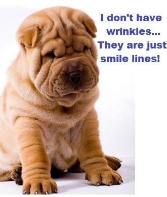 Very smile!