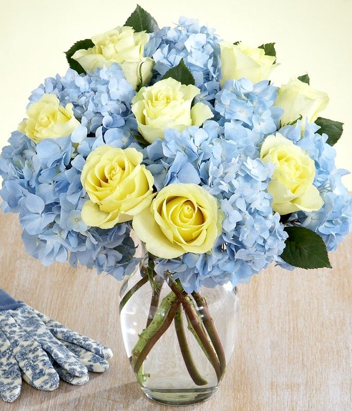 blue hydrangeas and light yellow roses.