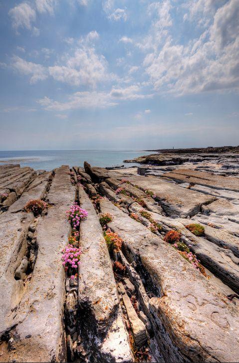 Stas B Aran Islands Rockscape, Inis Oírr, Galway, Ireland                                                                                                                                                                                 More