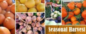 Mountain View Farmers Market. Every Sunday 9am to 1pm at the Caltrain Station.