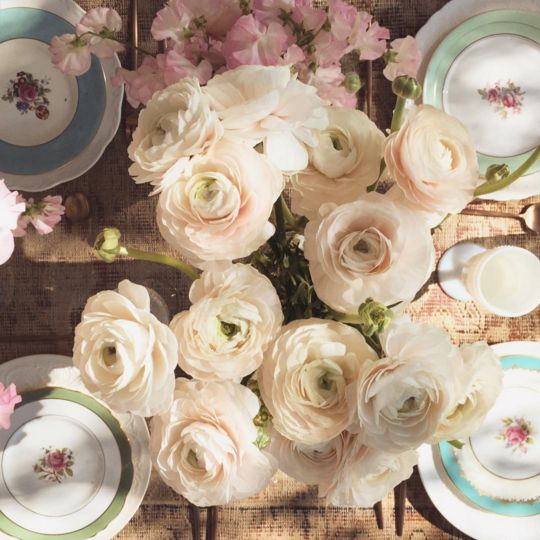 It's no secret that Lauren Conrad has a strong Instagram game. Her account is pretty, flowery, and very on brand.