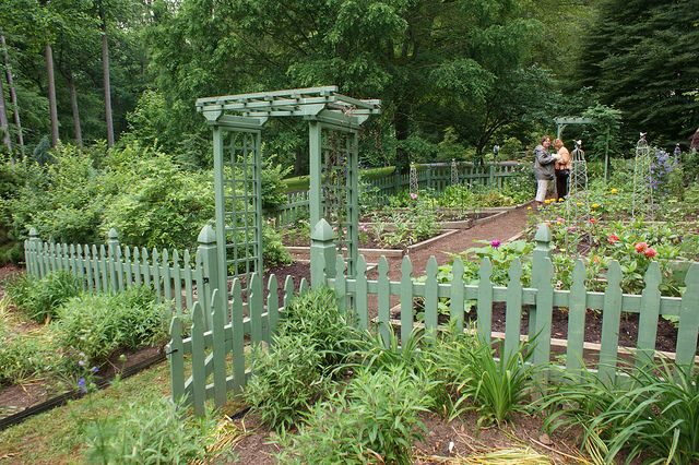Vegetable garden with green picket fence by KarlGercens.com, via Flickr