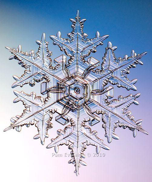 Snowflake photo taken: Nov 17th, 2010