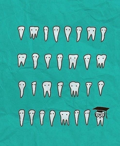 Открытки каждый, картинки зубов приколы