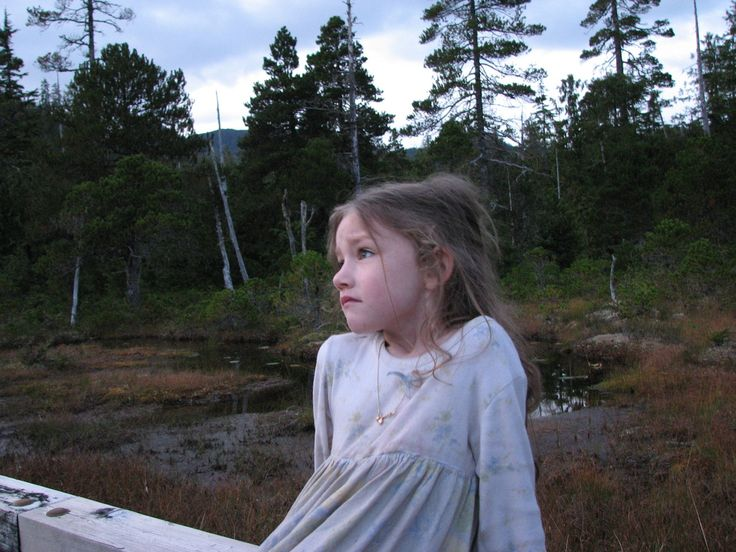 Rain - Alaskan Wilderness Brown Family