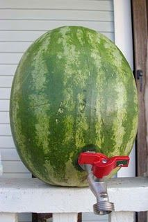 drunken watermelon on tap! what a great idea for the house warming!