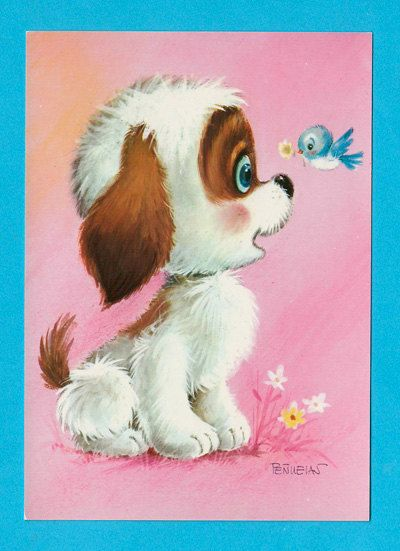 Vintage puppy  post card 70s.