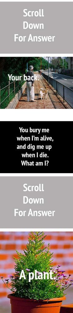 Difficult Riddles With Their Answers