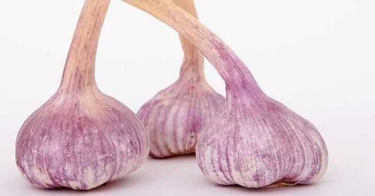 Di adiós a los hongos en las uñas con este remedio a base de ajo que te dejamos aquí
