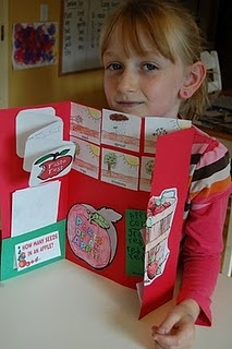 """Hmmm """"lapbooks"""", sound like a fresh look at Dinah Zike's ideas.....but I like it! Wonder how it could be used in the art room for end of the year review? I love Pinterest! Thanks for sharing!!"""