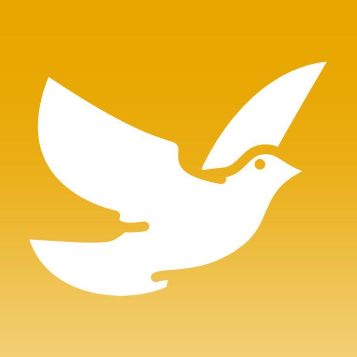 cool dove image - timo kipp - nathalia