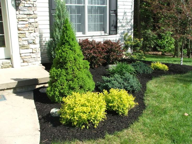 27 best images about landscaping ideas on pinterest for Punch home and landscape design won t install