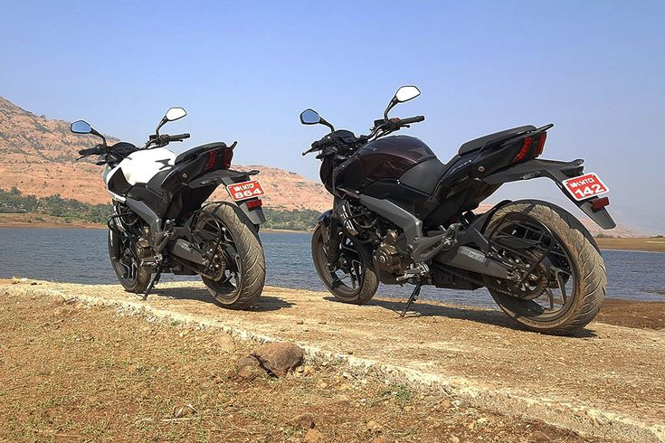 Bajaj Dominar 400 First Ride rear plum and white