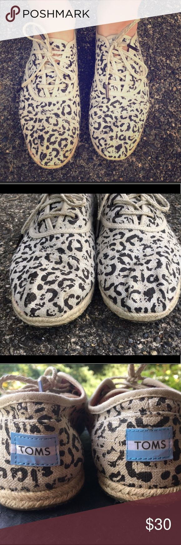 Super cute leopard Toms! Super cute leopard Toms, worn once! TOMS Shoes