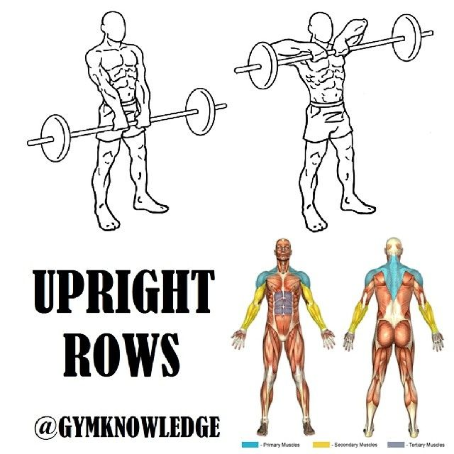 """""""Double tap for more #gymknowledge Upright Barbell Row  Main Muscle Worked:Shoulders Other Muscles:Traps  1.  Grasp a barbell with an overhand grip that…"""""""