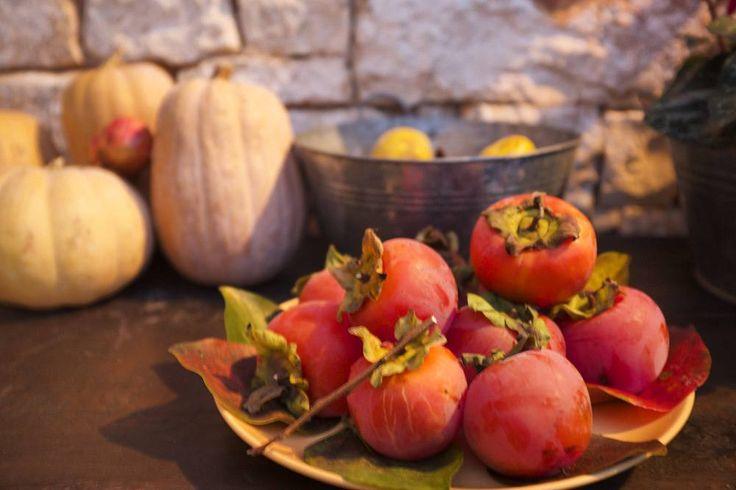 Zucche cachi e i colori autunnali della #Puglia  #viaggidiFederchiccca  #viaggi #365PugliaDays #travel #travelbloggerlife #Apulia #italicaexperience #food #igerspuglia #weareinpuglia by federchicca