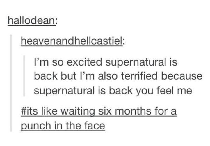 ''I'm excited Supernatural is back, but I'm also terrified because Supernatural is back, you feel me? It's like waiting six mounths for a punch in the face.'' MOST ACCURATE POST EVER!!!!!!!!!!!
