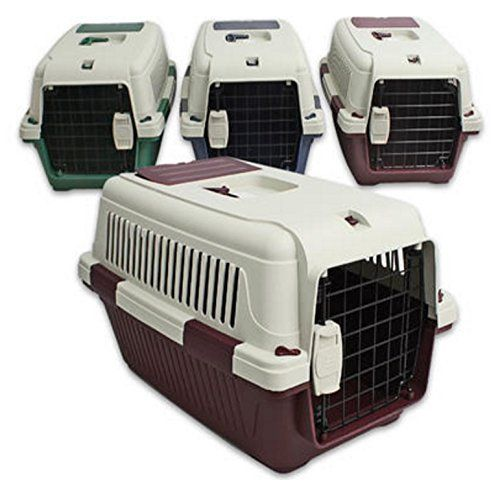New Dog Pet Cat Carrier 145x145x225D Plastic with Metal Cage Removable top * Find out more about the great product at the image link.