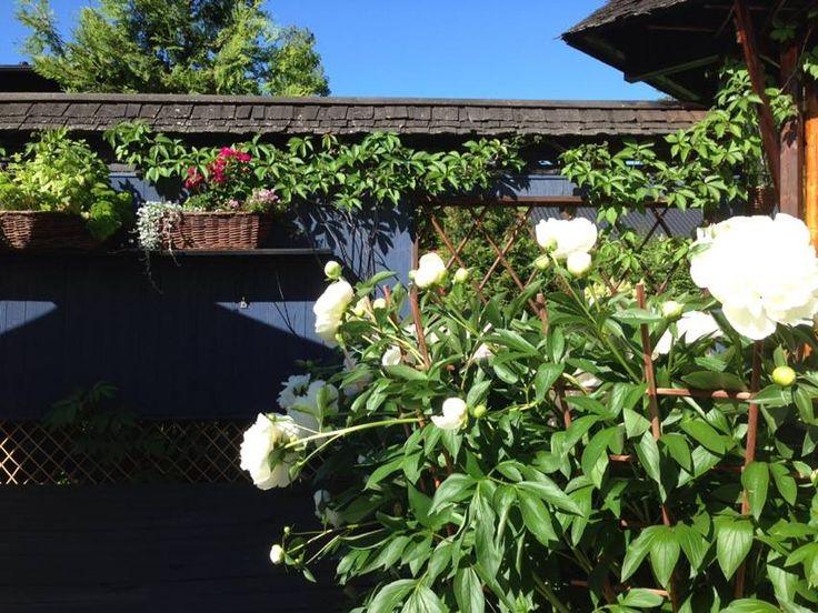 Garden design by Helena Kemppainen