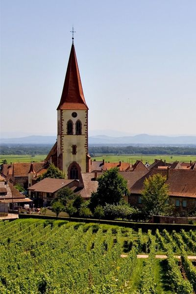Tips from winegrowers, restaurateurs, and  residents for your next French wine tour.