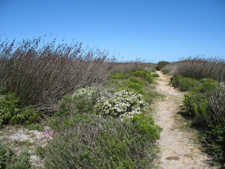 The start of the Shipwreck Trail at Cape Point, Cape Town, South Africa. By Exclusive Getaways.