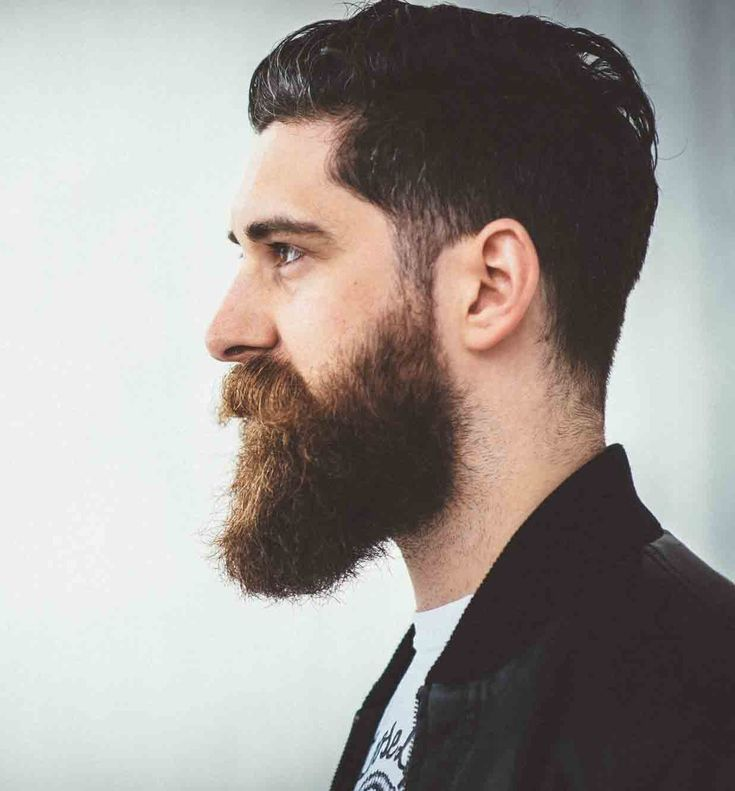 Long Beard Styles - Beard Styles Pictures
