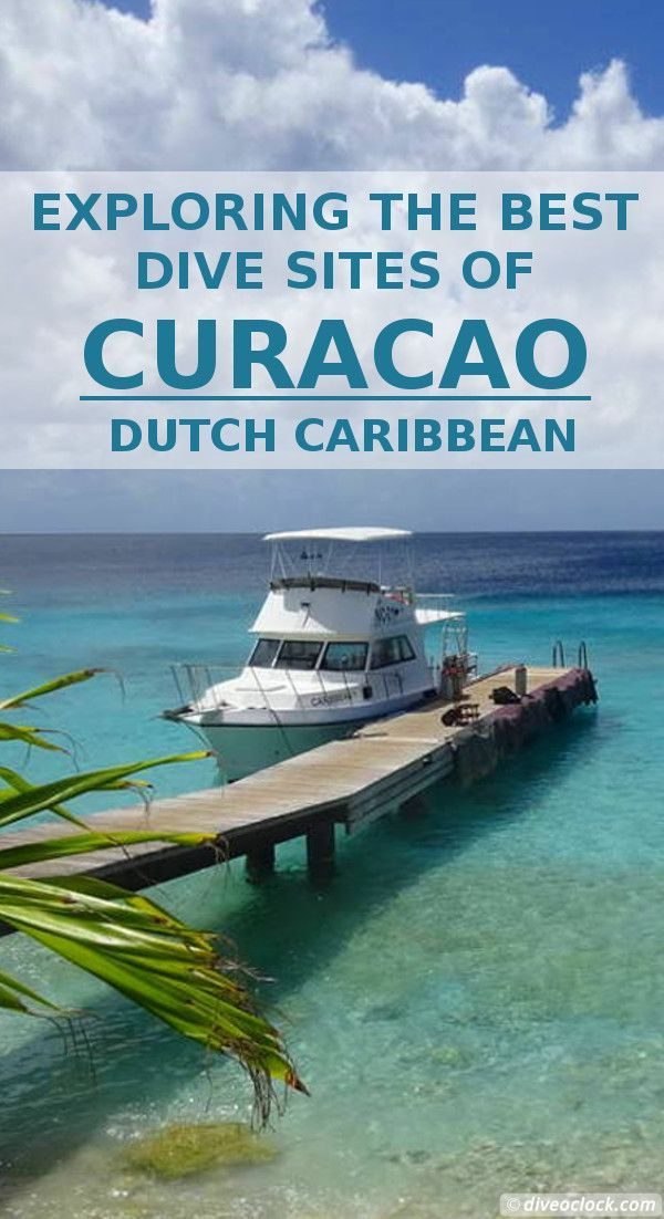 Exploring The Best Dive Sites Of Curaçao, Dutch Caribbean